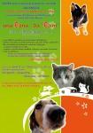 26 agosto 2008 cena di gala vegetariana per canile e gattile ENPA imola